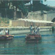 Barriera antiplastica sul Tevere: un successo