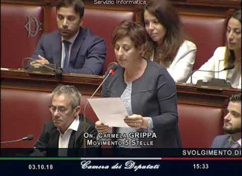 Concessioni balneari, Carmela Grippa (M5S) fa chiarezza sulla questione