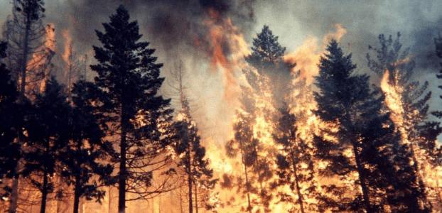 Doloso il mega-incendio del Gran Sasso